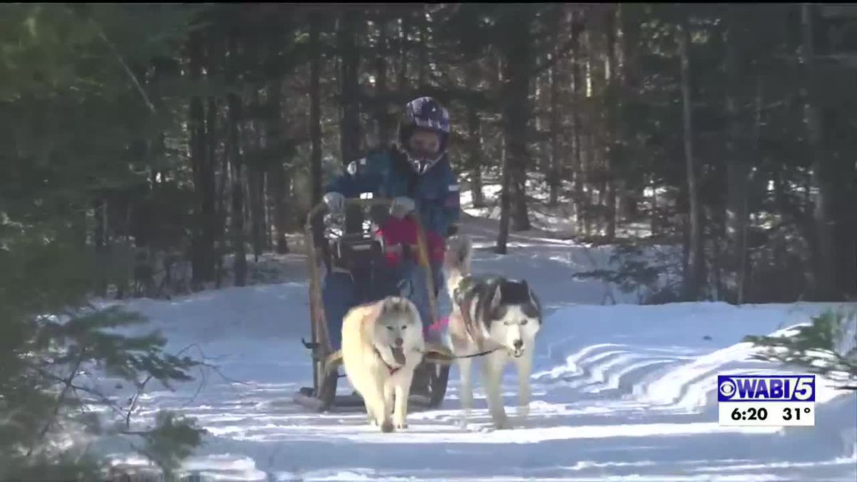High 5: 7 year old from Ellsworth helps rehome dogs, races with them