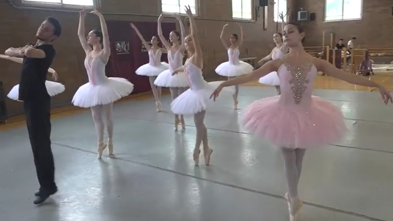 Russian Ballet Summer Intensive with the Bossov Ballet Theatre
