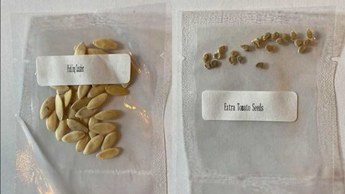 """The seeds are usually sent in white packages displaying Chinese lettering and the words """"China..."""