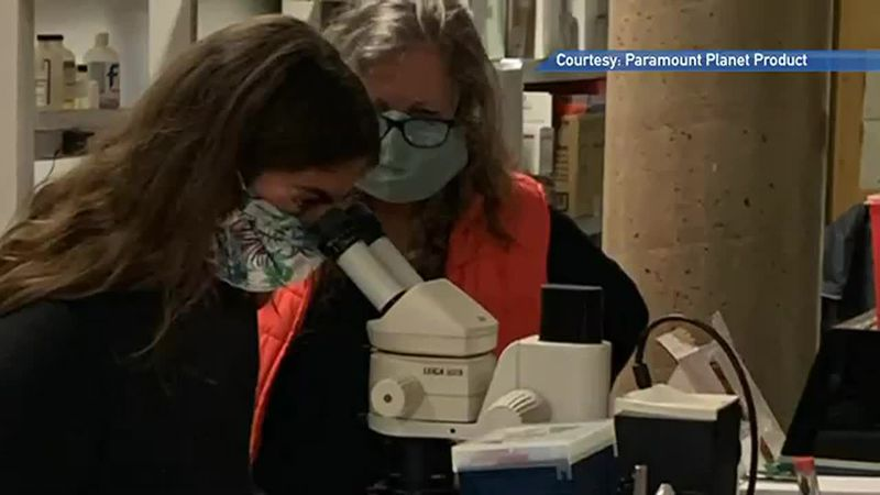 Ariadne Dimoula and Claudia Loud conduct research into creating compostable, fish-friendly...