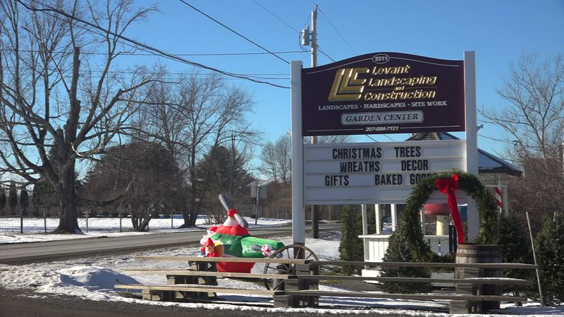 A Levant business is giving away free Christmas trees to families that need one.