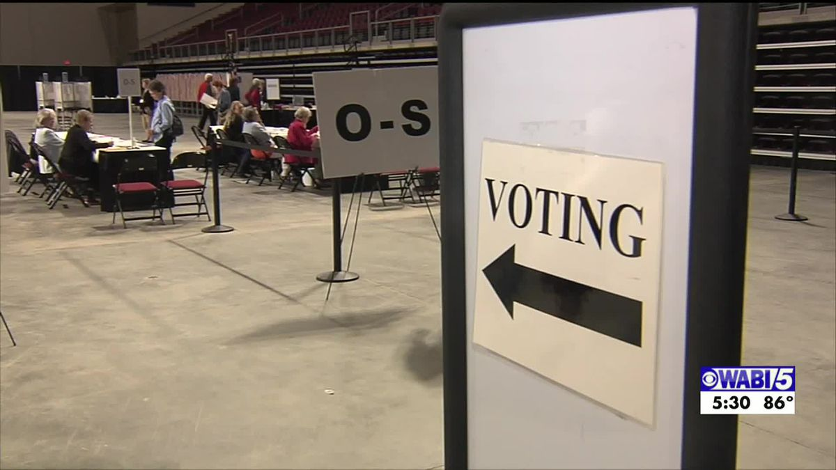Rank Choice Voting will not show up on November ballot