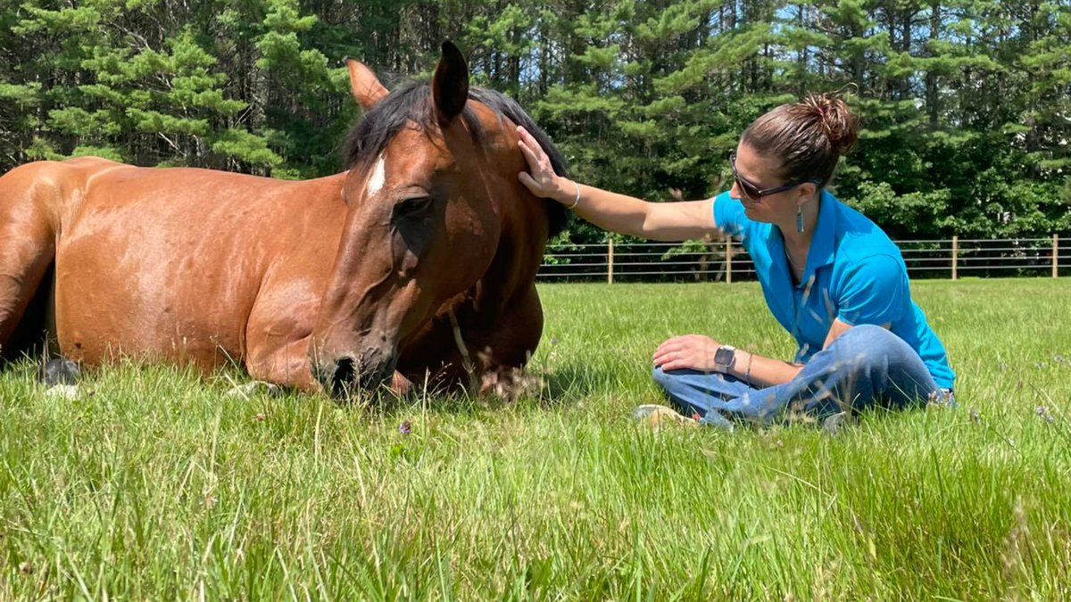 Jenna Baillargeon knows all too well the feeling of acceptance and love from a horse. She's the...