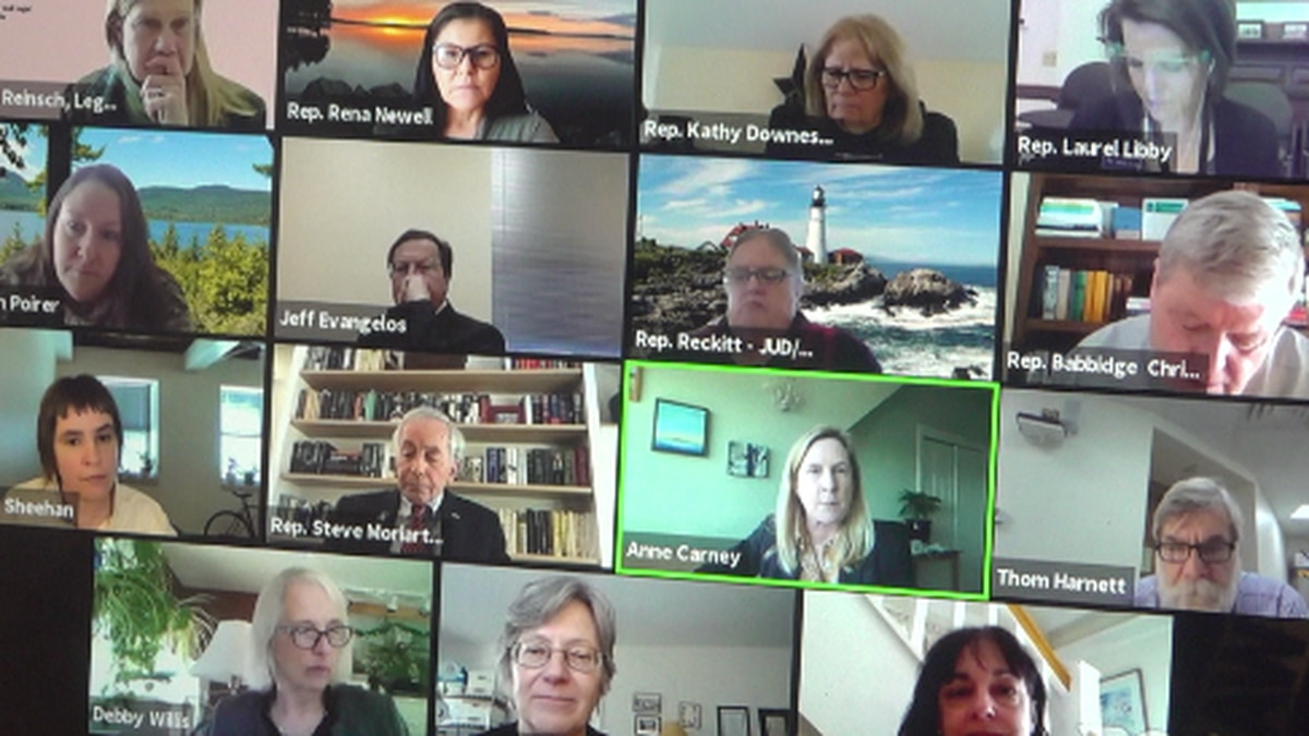 Lawmakers meet over ZOOM to talk about  possible updates to Maine Parentage Act.