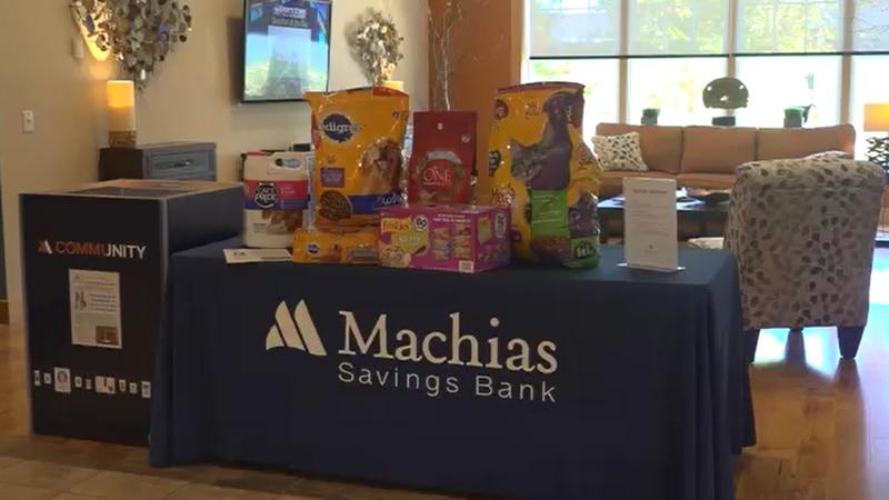 Machias Savings Bank
