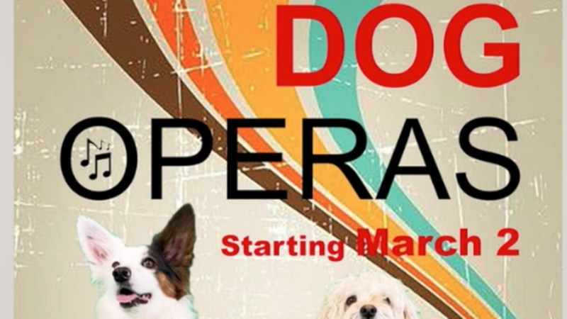 A local theatre company is allowing a couple of dogs to shine on the main stage with the Dog...