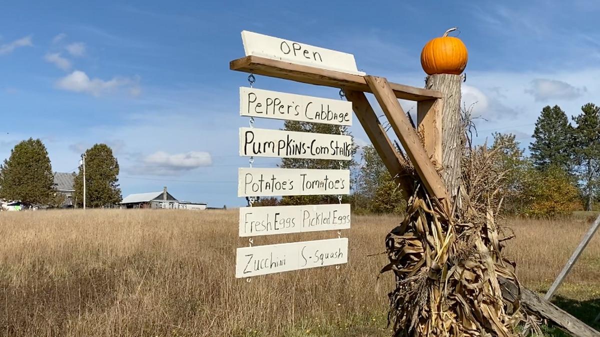 Ring Family Farm raises money for Make-A-Wish Maine