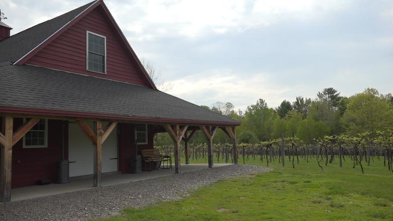 Dragonfly Farm & Winery, Stetson