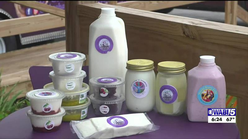 Pittsfield Cheese Festival being held this weekend