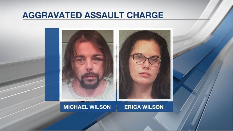 Michael Wilson and Linda Wilson are charged with aggravated assault